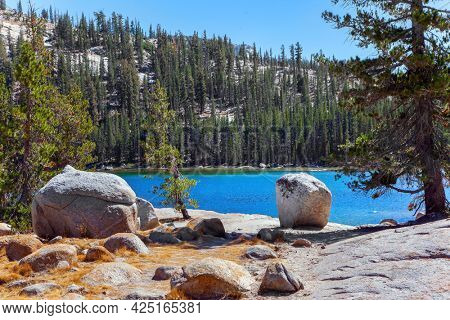 Shallow lake with clear water along the Tioga Road. Dense evergreen forest at the foot of the mountains surrounds the lake. Beautiful Tenaya lake in Yosemite Park. Warm sunny autumn day