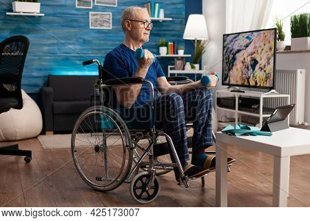 Invalid Pensioner In Wheelchair Training Body Muscles Persistence Using Gym Dumbbells Recovery After