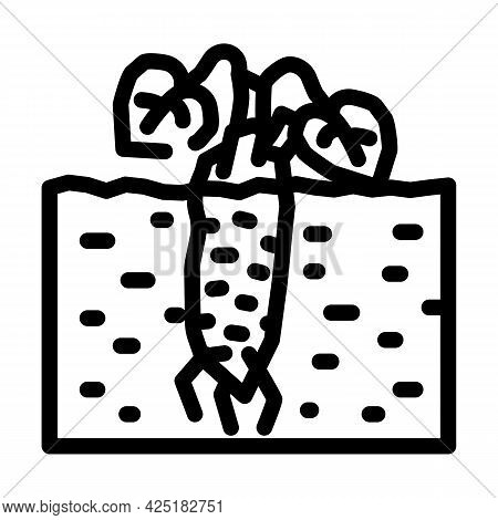 Root Plant Wasabi Line Icon Vector. Root Plant Wasabi Sign. Isolated Contour Symbol Black Illustrati