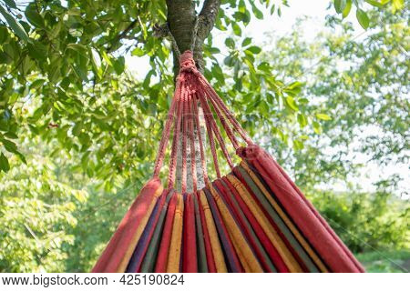 Close-up Color Travel Hammock For Relaxing In The Trees. A Colorful Empty Hammock Between Two Trees,