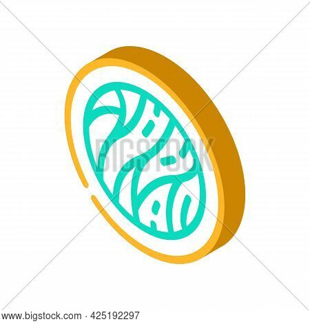 Cellulose Nutrition Fact Isometric Icon Vector. Cellulose Nutrition Fact Sign. Isolated Symbol Illus