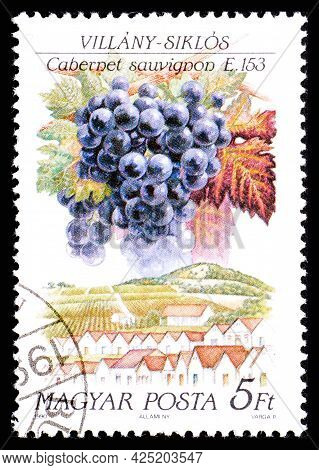 Hungary - Circa 1990: A Postage Stamp From Hungary Showing Sort Of Grape Cabernet Sauvignon In Villa