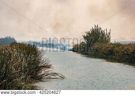 Burning Of Rice Stubble Burning Straw In Rice Farmers