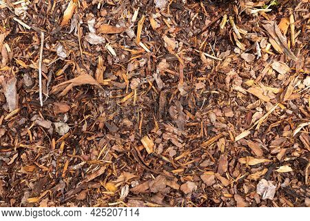 Texture. Natural Background. Slivers, Sawdust. Covering Material For Plants. Gardening Secrets. Warm