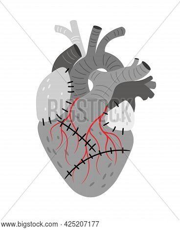 Anatomical Organ. Cartoon Pump For Blood With Muscle And Veins, Biological Cardiovascular Part Of Bo