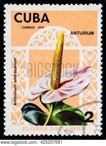 Cuba - Circa 1974: A Postage Stamp From Cuba Showing Garden Flowers Anturium