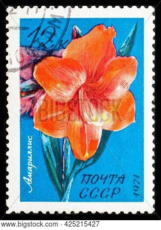 Russia, Ussr - Circa 1971: A Postage Stamp From Ussr Showing Flowers Amaryllis