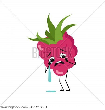 Cute Raspberry Character With Crying And Tears Emotions, Face, Arms And Legs. The Funny Or Sad Sweet