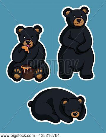 Black Bear (ursus Americanus). Cute Bear Set. Hand Drawn Vector Illustration Of A Cute Bear. Vector