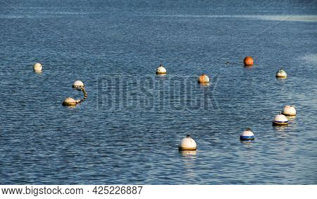 Buoys on water with evening light