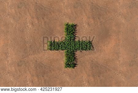 Concept conceptual green summer lawn grass symbol shape on brown soil or earth background, plus sign. 3d illustration metaphor for nature, conservation, organic, growth, environment, ecology, spring