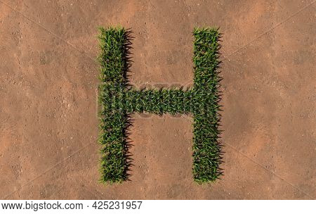 Concept conceptual green summer lawn grass symbol shape on brown soil or earth background, font of H. 3d illustration metaphor for nature, conservation, organic, growth, environment, ecology, spring