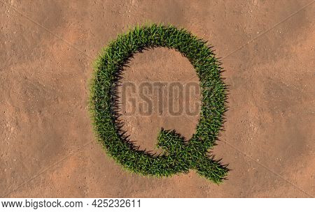 Concept conceptual green summer lawn grass symbol shape on brown soil or earth background, font of Q. 3d illustration metaphor for nature, conservation, organic, growth, environment, ecology, spring