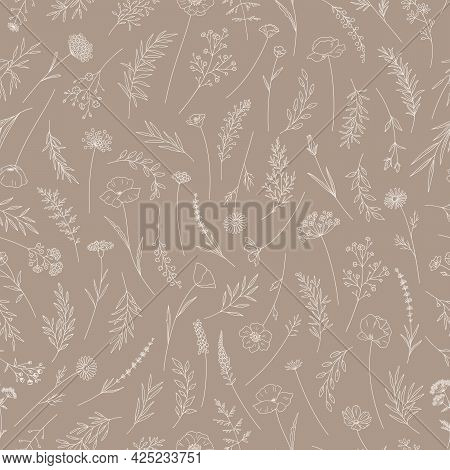 Seamless Pattern With Wildflowers. Meadow Herbs And Flowers. Floral Vector Illustration. Elegant Bot
