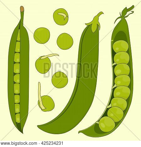 A Set Of Pods And Peas. Isolated Vector Illustration