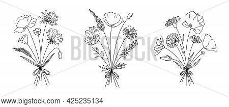 Wildflower Line Art Bouquets Set. Meadow Flowers, Herbs, Wild Plants, Botanical Hand Drawn Elements