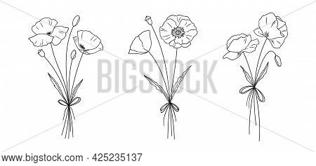 Poppies Bouquets Set. Hand Drawn Line Art Meadow Flowers For Design Projects. Floral Sketches. Botan