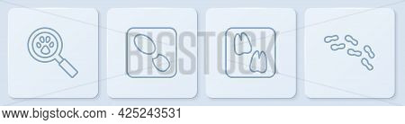Set Line Paw Search, Camel Paw Footprint, Human Footprints Shoes And . White Square Button. Vector