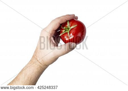 Ripe Red Tomato In Human Hand On White Isolated