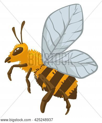 Bee Insect, Bumblebee Wildlife And Animals Vector