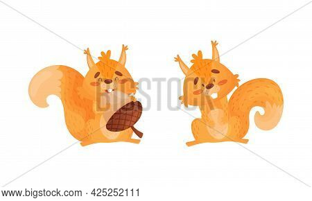 Fluffy Squirrel Character Gnawing Acorn Nut Vector Set