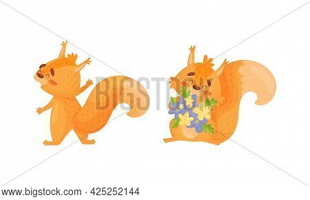 Fluffy Squirrel Character Holding Bunch Of Flowers Vector Set