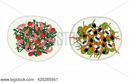 Salad With Mixed Greenery, Mushroom And Shrimps Served On Plate Above View Vector Set