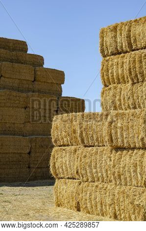 Rectangular Bales Of Dry Hay Against The Blue Sky. Storage Of Dry Herbs For Feeding Cows And Other A
