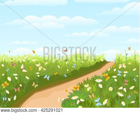 Road. Meadow With Wildflowers And Butterflies. Illustration. Grass Close-up. Green Landscape. Summer
