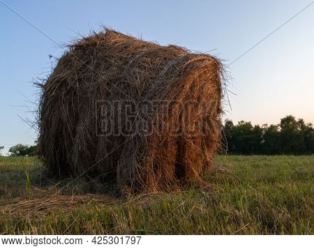 Rural Landscape With One Bent Roll Bale In Field During Blue Hour, Straw Haystack As Cattle Fodder