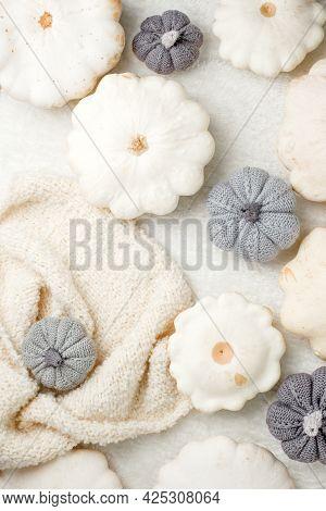 Creative Autumn White Sweater, White Squash, Decorative Knitted Pumpkin On White Background Copy Spa