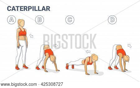 Girl Doing Caterpillar Walk Exercise Fitness Home Workout Guidance Illustration. Inchworm Walkouts.