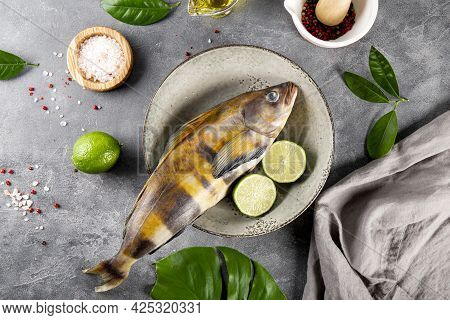 Raw Fish Sea Bass Or Lingcod And Seasonings For Cooking It On A Gray Background Top View