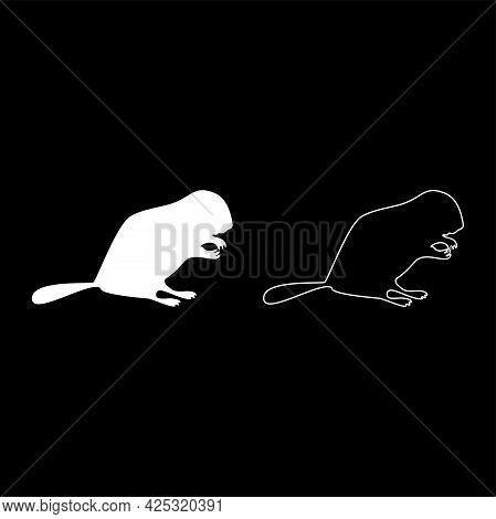 Beaver Animal Rodent Stand Silhouette White Color Vector Illustration Solid Outline Style Simple Ima