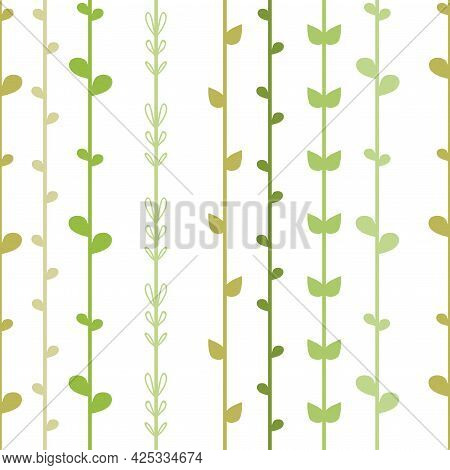 Seamless Floral Background With Green Herb Strings. Ivy On White. Spring Stripy Vector Illustration.