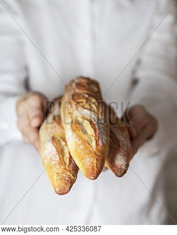 Female Baker Holds Fresh Baked French Baguette. Homemade Sourdough Bread. Homemade Food. Food Prepar