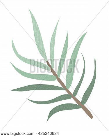 A Hand-drawn Branch, Twig With Green Sharp Leaves, The Texture Of Chaotic Thin Lines, Minimal, Simpl