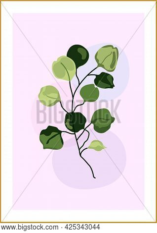 Botanical Vector Illustration In The Form Of An Abstract Composition With Eucalyptus Leaves On A Del