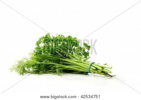 Crop Of Herbs
