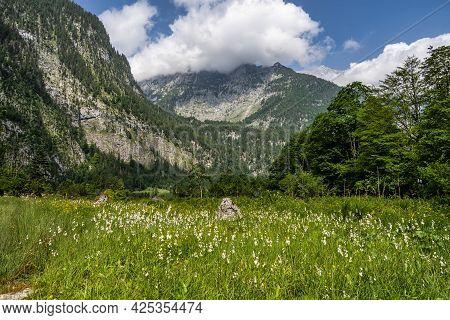 Path To Obersee Lake Behind The Watzmann Massif, Salet At Koenigssee, Berchtesgaden National Park, B