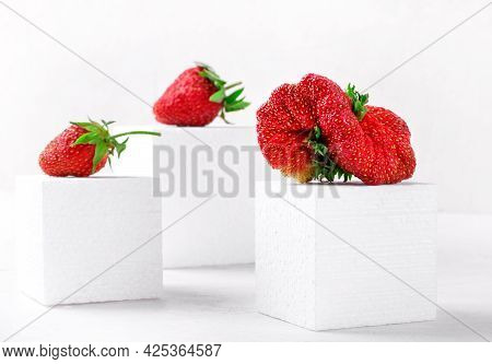 Weird Looking Strawberry And The Usual Ones On White Podiums. Imperfect But Tasty Farmer Product. Fi