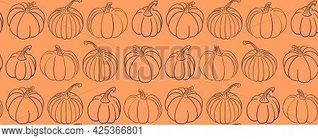 Pumpkin Orange Autumn Background. Vector Seamless Pattern With Various Hand Drawn Squash Vegetable I