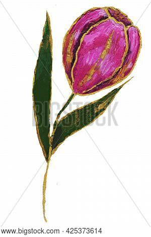 The Tulip Is A Pink Flower With Green Petals And A Stem Blooms In Spring With A Golden Border