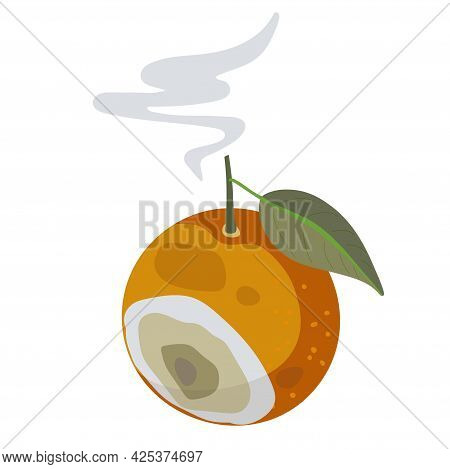 Organic Waste Template. Bad Rotten Orange Fruit Isolated On White. Citrus Fruit Becomes Spoiled. Foo