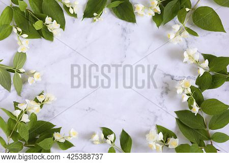 Jasmine, Branches Flowers On White Marble Background. Frame Design Spring Floral Greeting Card, Wedd
