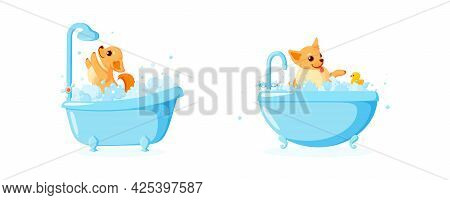 Dog Grooming In A Bathtub With Rubber Duck. Set With Chihuahua In Soap Foam Isolated In White Backgr