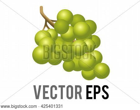 The Isolated Vector Fruit Gradient Green Grape Bunch Icon, As Cut From The Vine And Used To Make Win