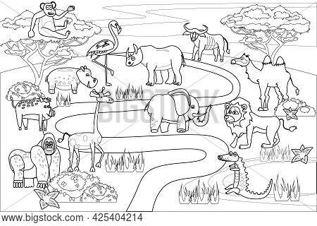 Jungle, Africa Safari Animals Coloring Book Edicational Illustration For Children. Set Cute Lion, Cr