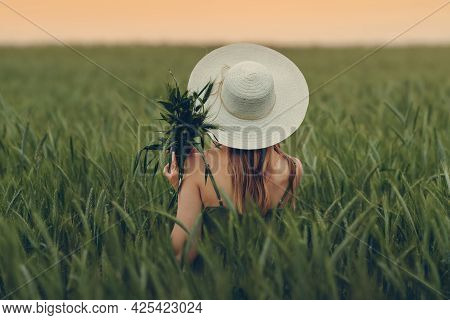 Young Woman In Field Looking At Sunset. Wheat Field. Beautiful Nature Sunset Landscape. Background O