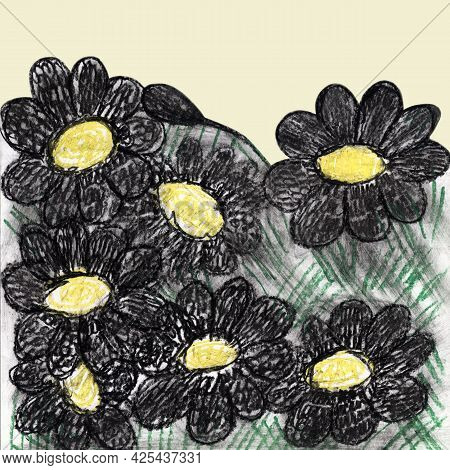 Botanical Illustration With Daisies. Hand Painting, Naturalistic Black-yellow Flowers. Summer Print.